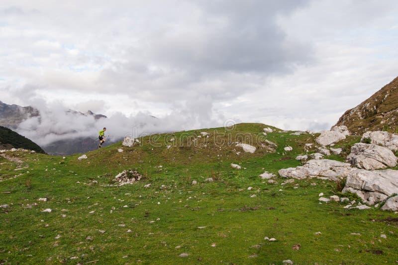 Himmelläufer stockfoto