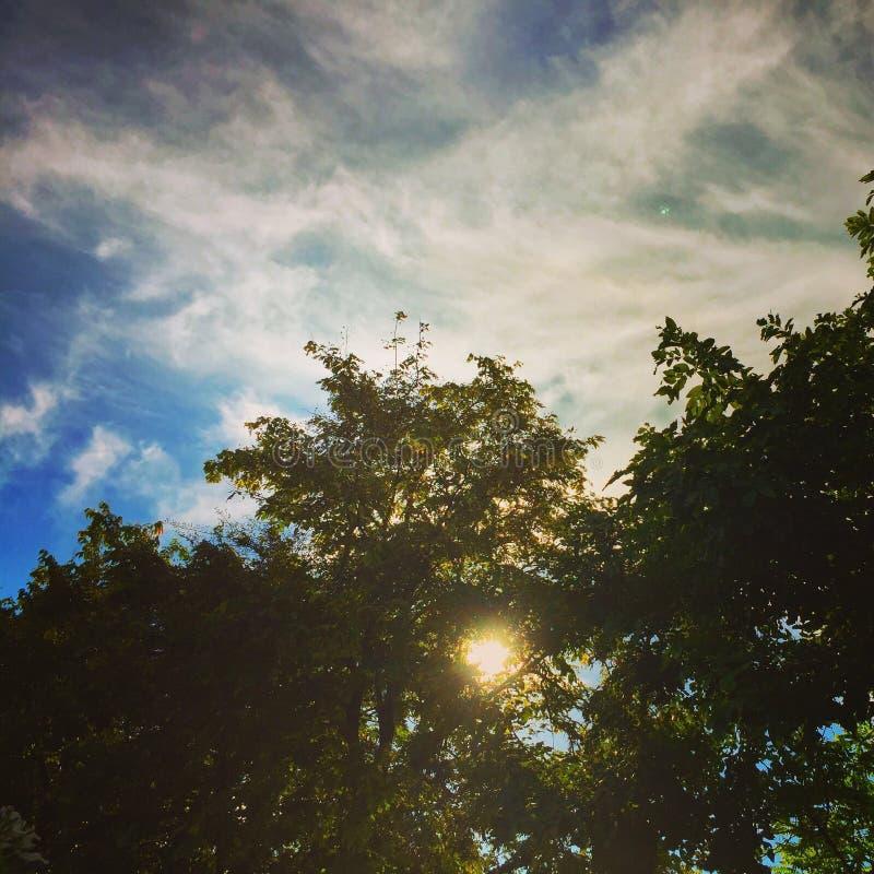Himmelnatur-Flussblau stockfotos