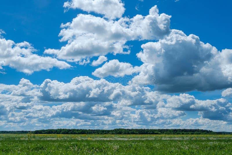 Himmelwolkenfeld lizenzfreie stockfotos