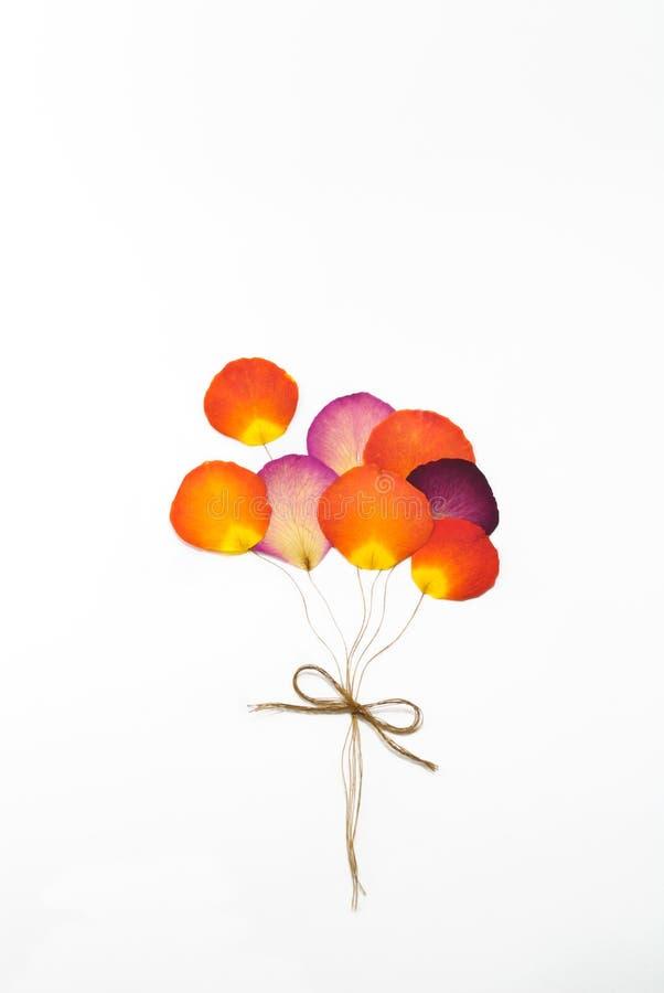 Hinche de la flor color de rosa de la prensa foto de archivo