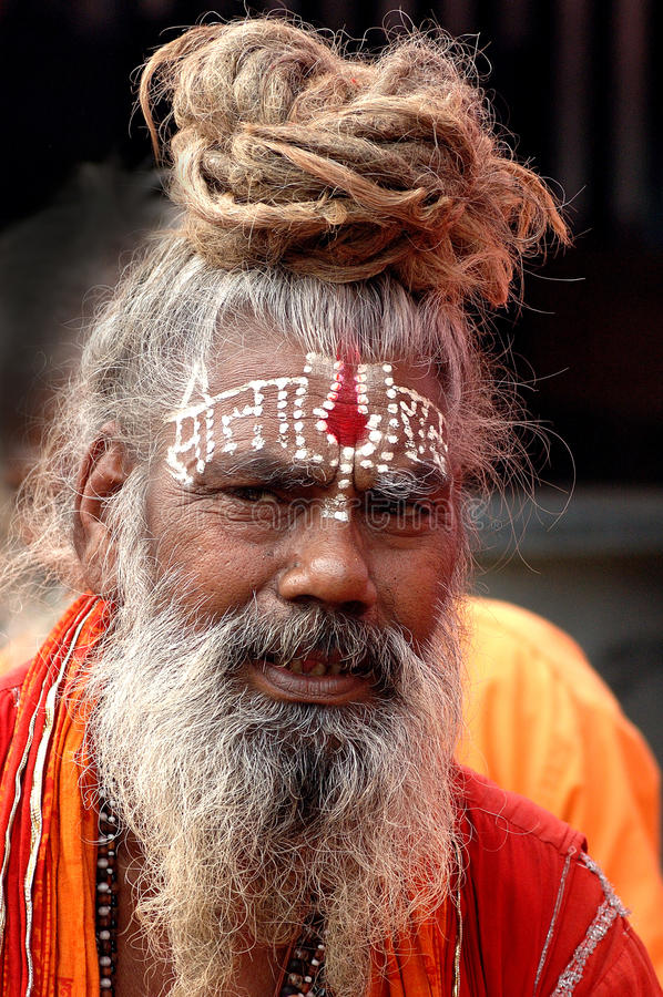 Hindoese Sadhu in India royalty-vrije stock afbeelding