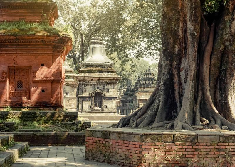 Hindu Shrine Pashupatinath Temple. Place for cremation ceremony on Bagmati river. Nepal, Great religious architecture in Kathmandu stock photo