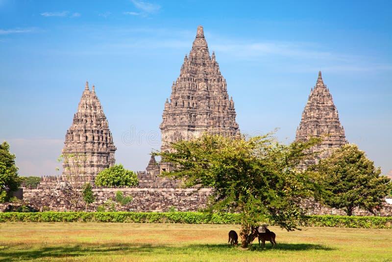 Hindu temple Prambanan royalty free stock photo
