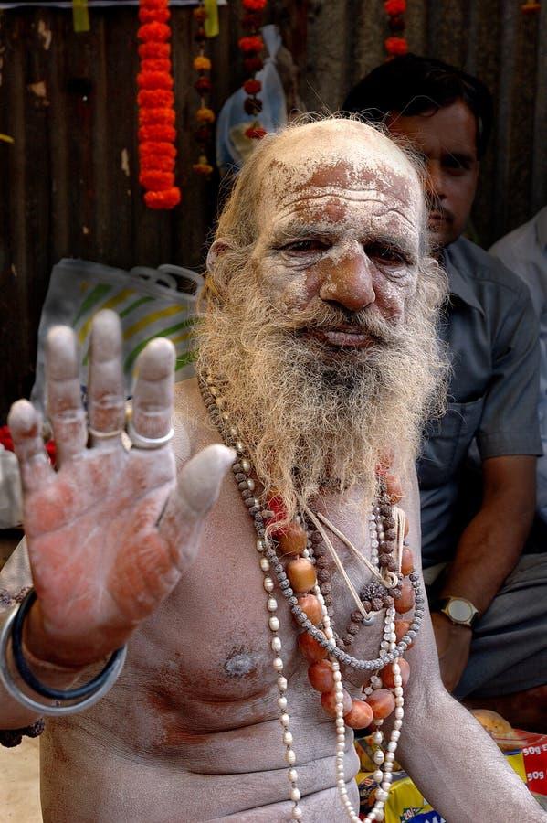 Hinduistisches Sadhu in Indien stockbild