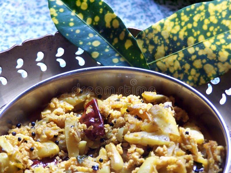hindusi curry obraz stock