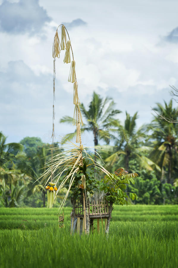 Hinduska Rice pola świątynia, Bali, Indonezja obraz stock
