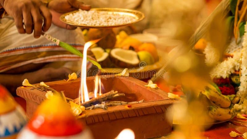 Hinduski ksiądz poświęcać olej podczas ślubu obrazy royalty free