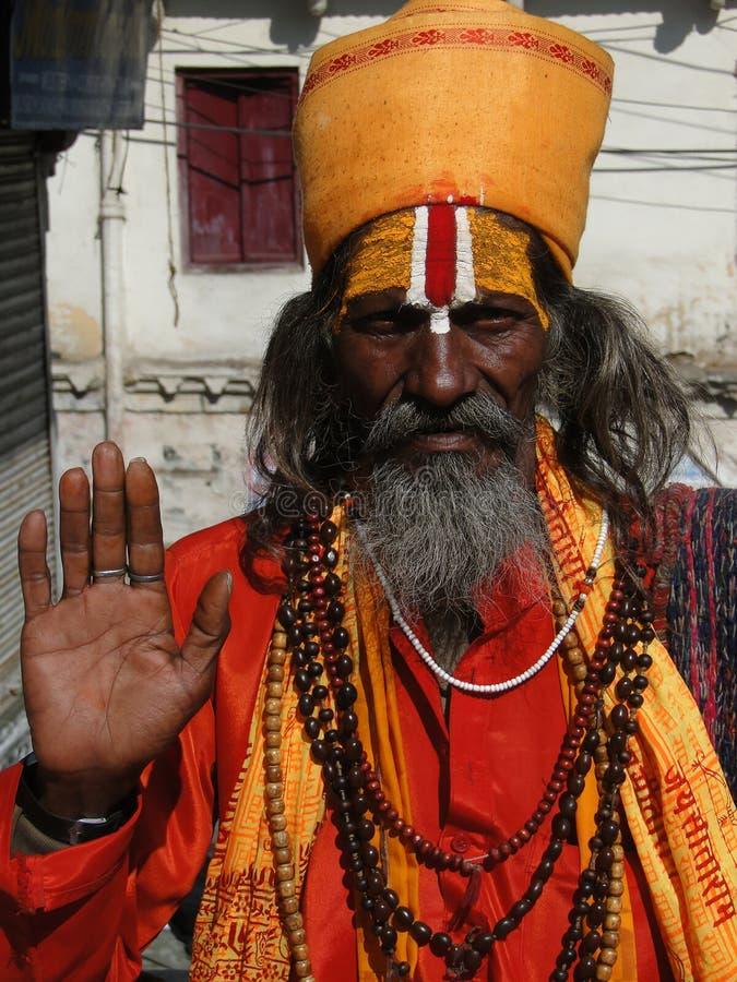 Hinduski Sadhu zdjęcie stock