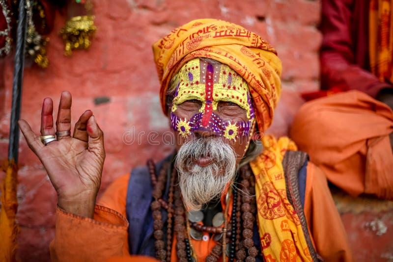 Hinduski sadhu lub święty zdjęcia stock