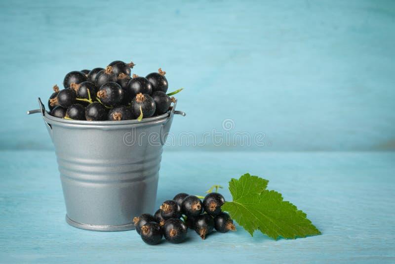 Hink av den svarta vinbäret på en blå träbakgrund med kopieringsutrymme arkivfoto