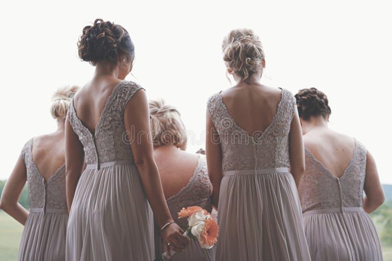 Hinter Schuss von den Brautjungfern, die cremefarbene Kleider an einer Hochzeit tragen stockfoto