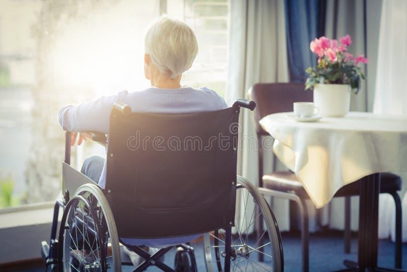 Hintere Ansicht der älteren Frau der älteren Frau, die auf Rollstuhl sitzt vektor abbildung