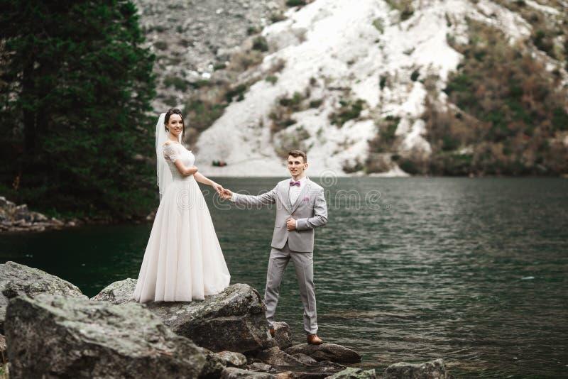Hintere Ansicht der Braut und des Br?utigams, stehend auf dem Seeufer mit szenischem Bergblick in Polen Morskie Oko stockbilder