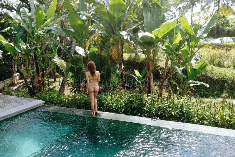 Hintere Ansicht der Frau im Bikini in einem privaten Pool in Bali bewundert eine schöne Ansicht der Palmen Luxusfeiertag M?dchen stockfotografie