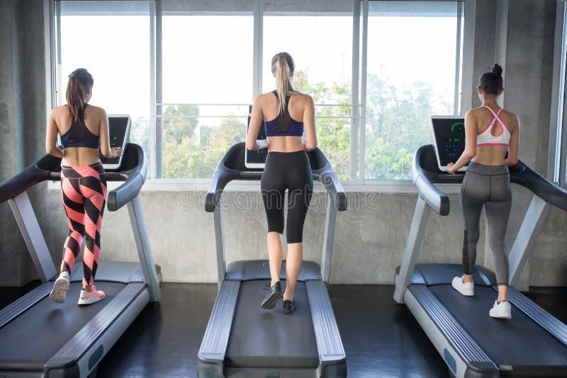 Hintere Ansicht der Gruppe junger Leute, die auf Tretmühlen in der Sportturnhalle laufen Frauenläufer der Eignung drei auf laufen lizenzfreie stockfotos