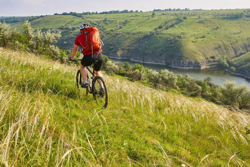 Hintere Ansicht der jungen attraktiven Radfahrerreitmountainbike in der Sommerwiese lizenzfreies stockbild