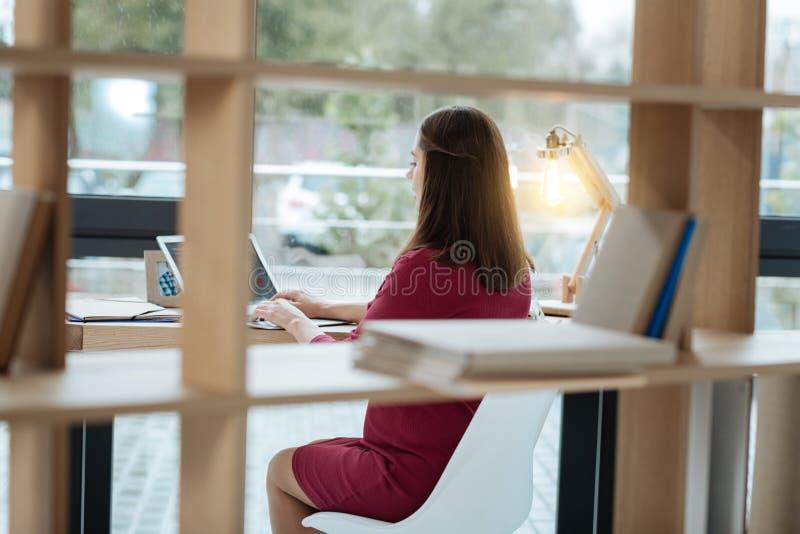 Hintere Ansicht der jungen Frau arbeitend mit einem Laptop lizenzfreie stockfotos