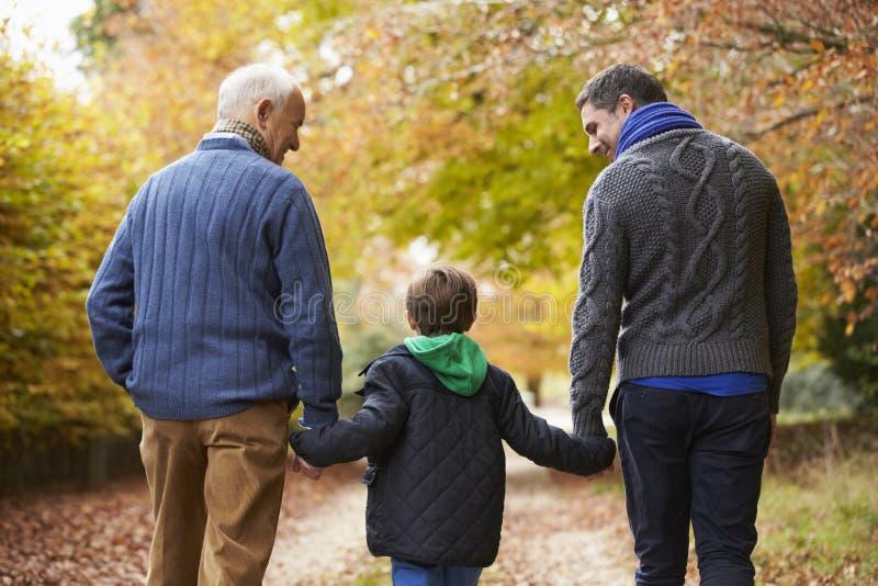 Hintere Ansicht der männlichen Multl-Generations-Familie, die auf Weg geht stockbilder