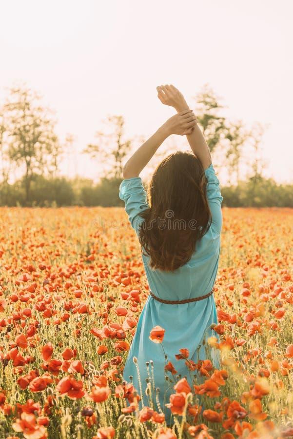 Hintere Ansicht der romantischen Frau auf dem Mohnblumenblumengebiet lizenzfreie stockfotografie