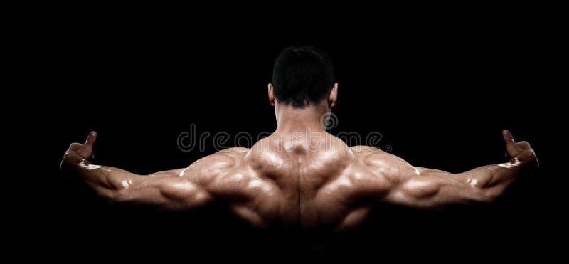Hintere Ansicht des gesunden muskulösen jungen Mannes stockfotos