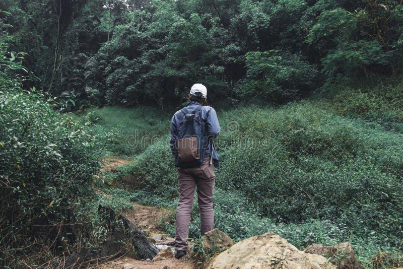 Hintere Ansicht des jungen asiatischen Abenteuermannes, der auf Naturgrünberg wandert Reiselebensstil und Entspannungskonzept lizenzfreie stockfotografie