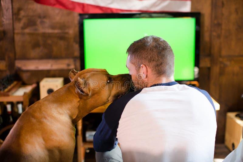 Hintere Ansicht des Mannes und seines Hundebegleiters, die auf Couch sitzen lizenzfreie stockbilder