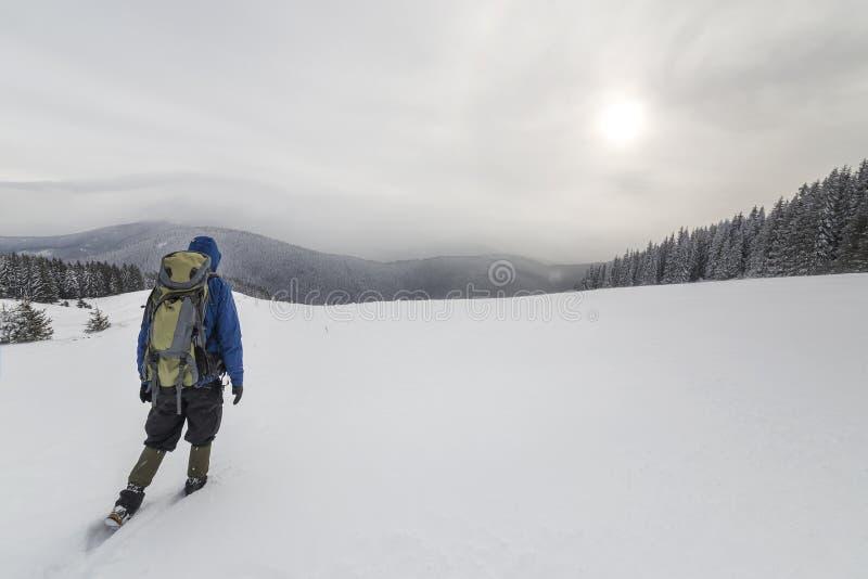 Hintere Ansicht des touristischen Wanderers in der warmen Kleidung mit Rucksack die aufwärts Berge gehend bedeckt mit Schnee auf  stockbild
