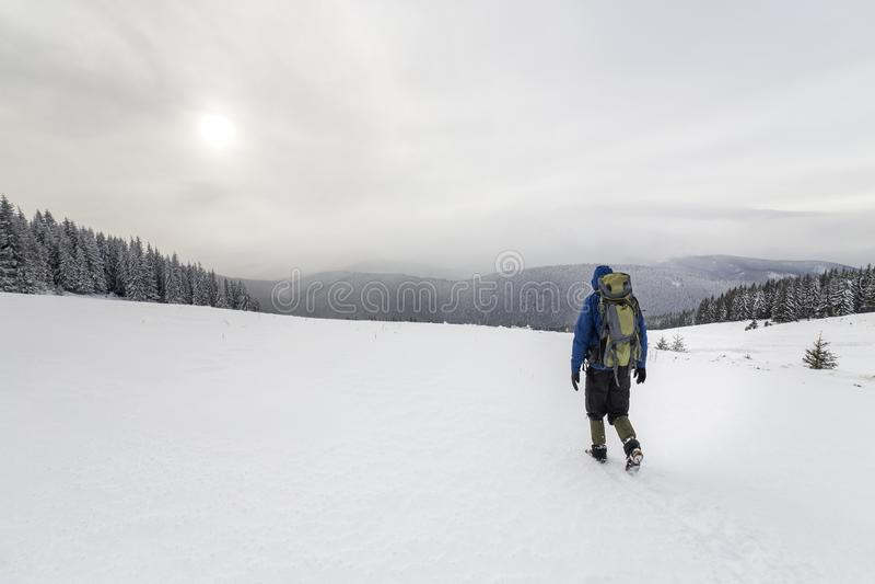 Hintere Ansicht des touristischen Wanderers in der warmen Kleidung mit Rucksack die aufwärts Berge gehend bedeckt mit Schnee auf  stockfotos