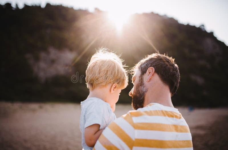 Hintere Ansicht des Vaters mit einer Kleinkindjungenstellung auf Strand an den Sommerferien bei Sonnenuntergang stockbild