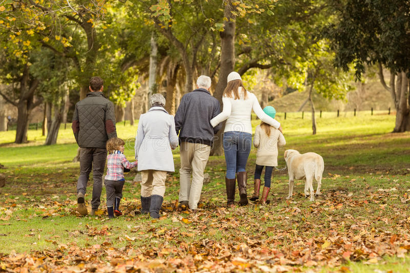 Hintere Ansicht einer Großfamilie lizenzfreies stockbild