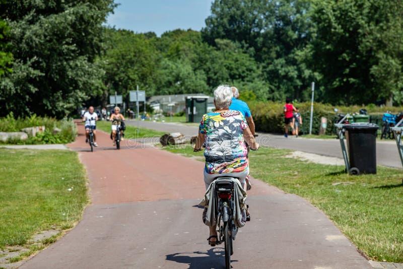 Hintere Ansicht eines reifen Frauenreitfahrrades in einem Park lizenzfreie stockfotos