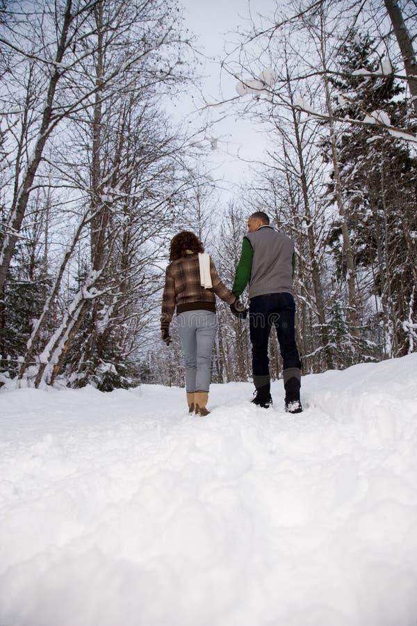 Hintere Ansicht eines reifen Paares, das durch Schnee geht lizenzfreie stockfotos