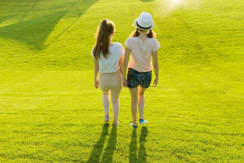 Hintere Ansicht, Freundinnen gehen in den Park in der Natur Mädchen gehen entlang den grünen Rasen, sprechen, haben Spaß lizenzfreies stockbild