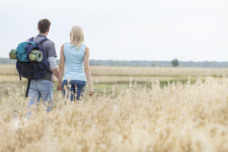 Hintere Ansicht von den Jungen, welche die Paare gehen durch Feld wandern lizenzfreies stockfoto