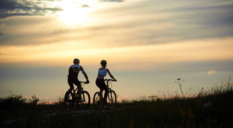 Hintere Ansicht von den Paarradfahrern, die entlang die Straße unter Gras mit Wildflowers unter Abendhimmel reiten stockfotografie