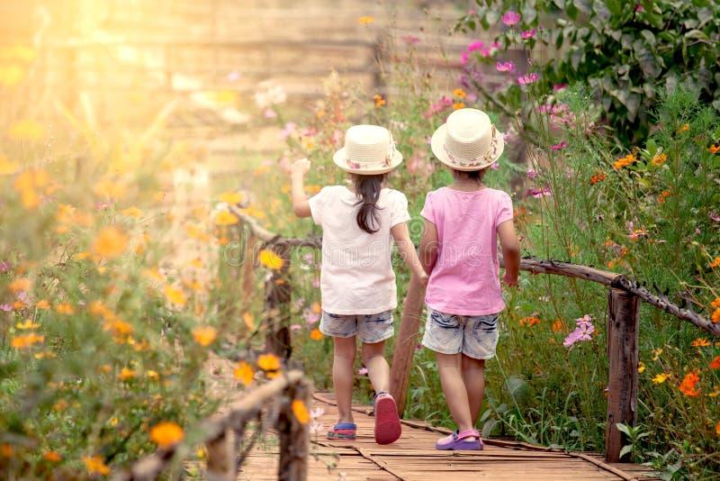 Hintere Ansicht von zwei kleinen Mädchen, die Hand halten und zusammen gehen stockfotografie