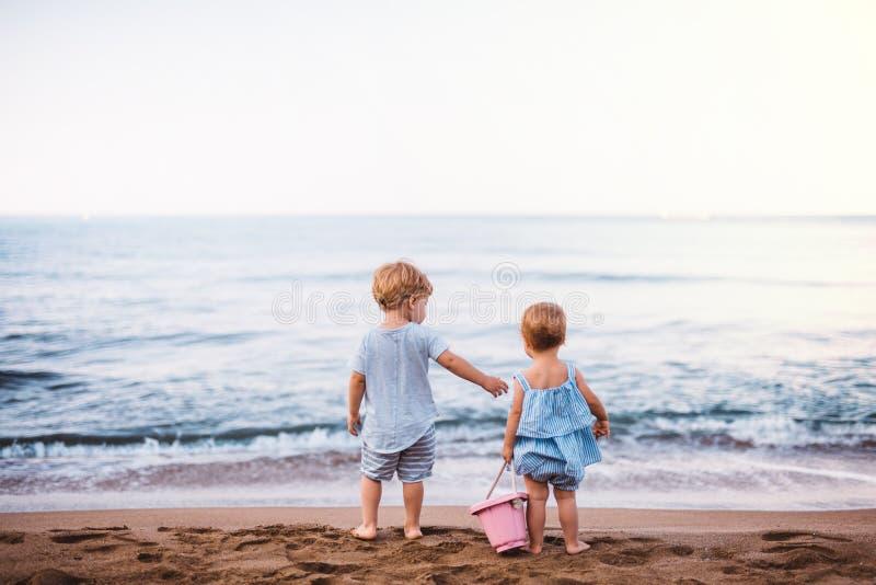 Hintere Ansicht von zwei Kleinkindkindern, die auf Sandstrand an den Sommerferien spielen stockfoto
