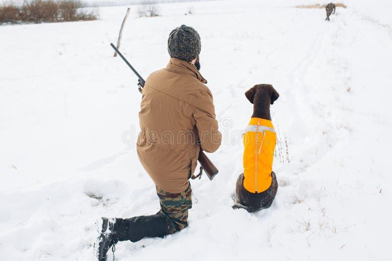 Hinterer Ansichtschuß ein Jäger und ein Hund sind bereit, auf das Tier zu schießen lizenzfreie stockfotos