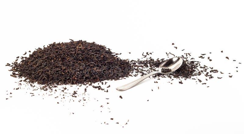 Hinterer Tee lokalisiert stockbilder
