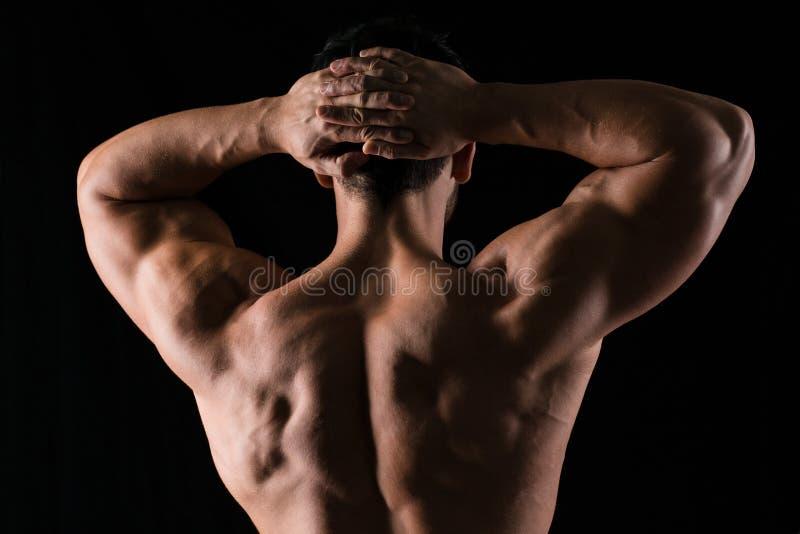 Hinteres Ansichtporträt eines muskulösen Mannes lizenzfreie stockfotografie