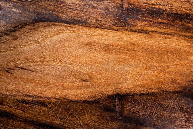 Hintergrund, altes strukturiertes Holz, Ulme lizenzfreie stockbilder