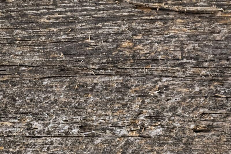 Hintergrund, Beschaffenheit des alten geplanten Brettes stockbilder
