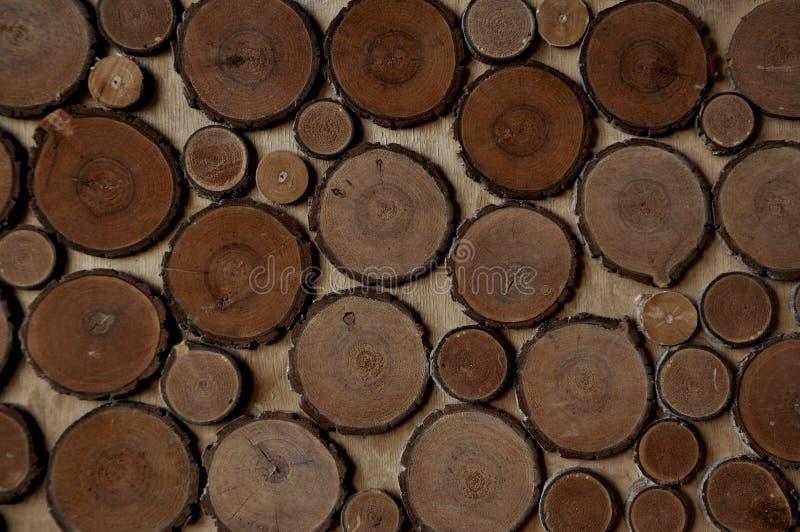 Hintergrund - Beschaffenheit von geschnittenen Baumringen stockbild