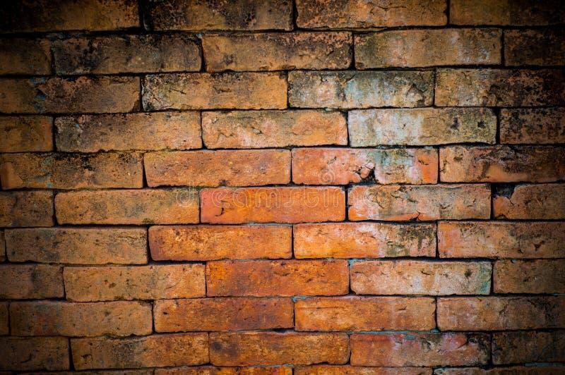 Hintergrund der Backsteinmauer lizenzfreie stockfotos