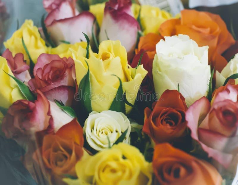 Hintergrund der Draufsicht der orange Nahaufnahme der Rosen, Hintergrundmodell, Blumenkonzept stockfoto