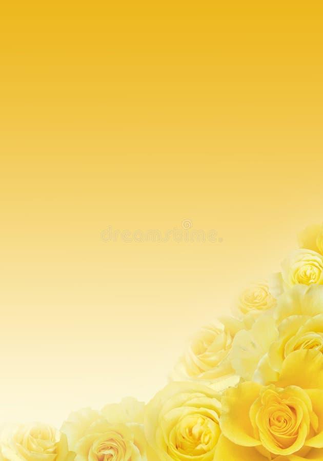 Hintergrund der gelben Rosen stock abbildung