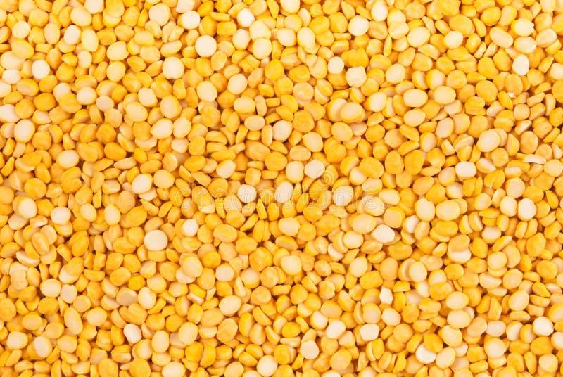 Hintergrund der getrockneten gelben Erbse lizenzfreie stockbilder