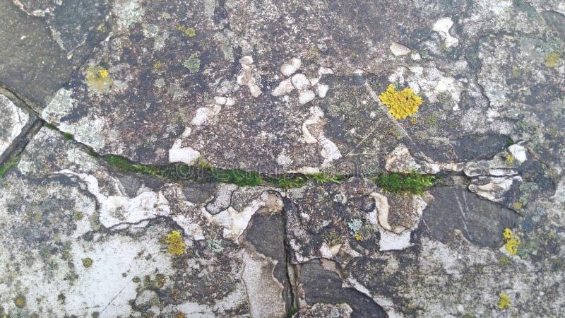 Hintergrund des alten Steins und des grünen Grases lizenzfreie stockfotos