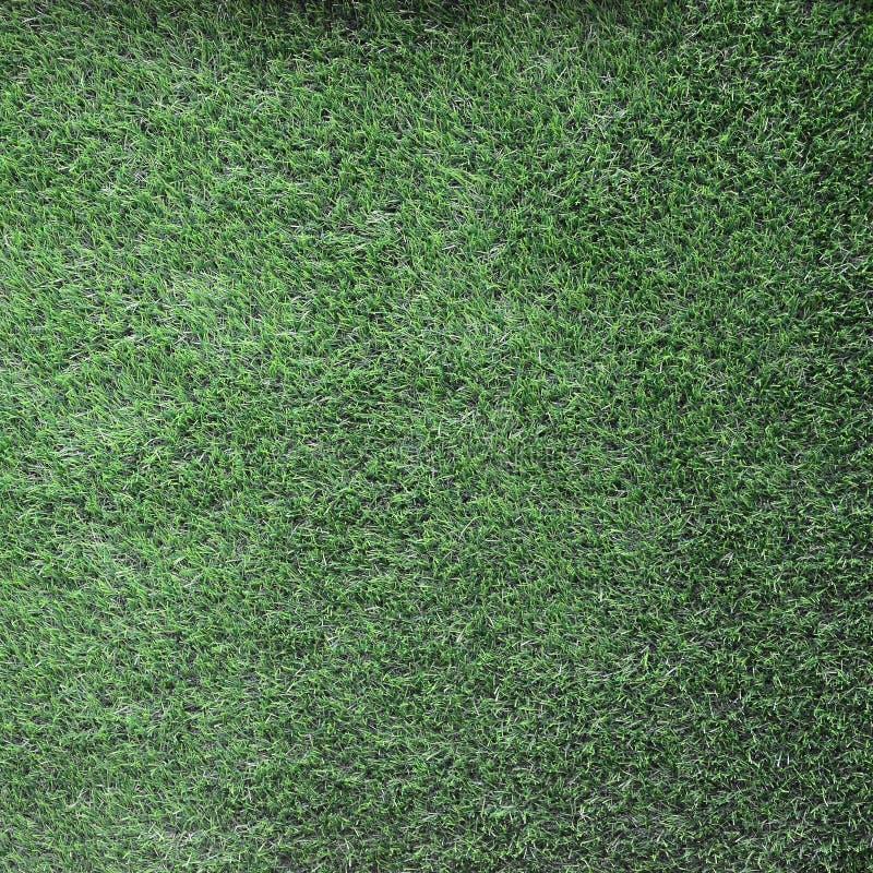 Hintergrund des grünen Grases, grünes Rasenmuster maserte Hintergrund stockbilder