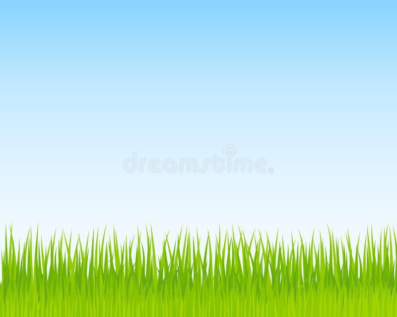 Hintergrund des grünen Grases und des blauen Himmels Platz für Ihren Text vektor abbildung